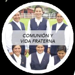 Curso comunión y vida fraterna