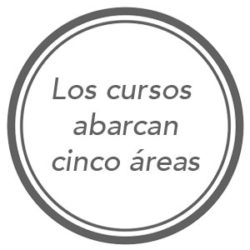 instituto-dar-cursos-de-cinco-areas